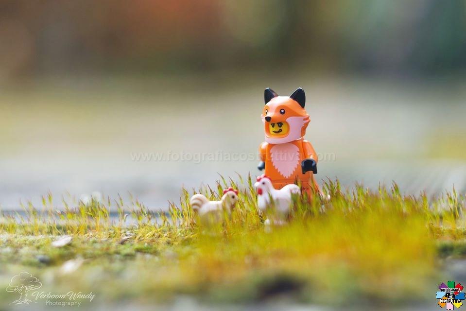 21-02-2020 Wendy Verboom 54 La volpe The Fox