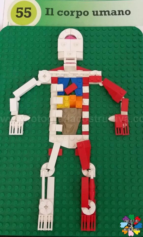 06-03-2020 Elena Nicora Roberto D'Amario 65 Studiando il corpo umano....creazione di Gabriele ❤