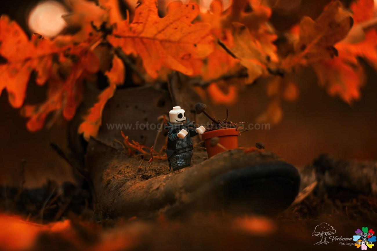 21-10-2020 Wendy Verboom 57 Halloween is coming